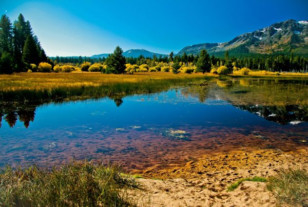 Lake Tahoe spring